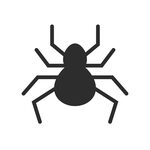 Spiders Pest Control